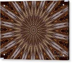 The Eye Of Pretense Acrylic Print by Fania Simon