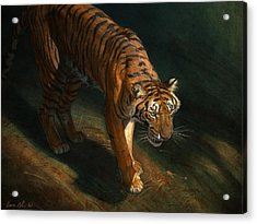 The Eye Of The Tiger Acrylic Print by Aaron Blaise