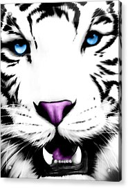 The Eye Of The White Tiger Acrylic Print by Gina Dsgn