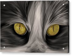 The Eyes Have It Acrylic Print by Angela A Stanton