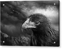 The Eyes Of The Hawk Acrylic Print