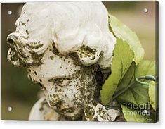 Acrylic Print featuring the photograph The Face Of An Angel by Amber Kresge