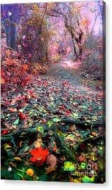 The Fallen Leaves Acrylic Print