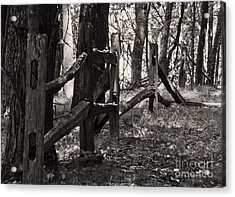 Acrylic Print featuring the photograph The Fence by JRP Photography