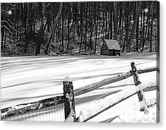 The Fence Line In Black And White Acrylic Print by Paul Ward