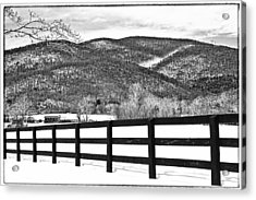 The Fenceline B W Acrylic Print