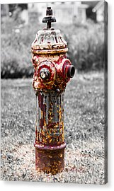 Acrylic Print featuring the photograph The Fire Hydrant by Ricky L Jones