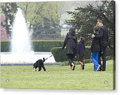The First Family And Bo Acrylic Print by JP Tripp