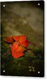The First Whispers Of Fall Acrylic Print