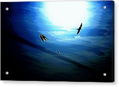 Acrylic Print featuring the photograph The Flight by Miroslava Jurcik