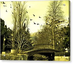 The Flock Near Bridge  Acrylic Print by Rick Todaro