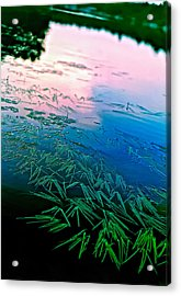The Flow Acrylic Print by Steve Harrington