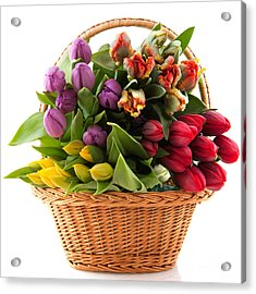 The Flower Basket Acrylic Print by Boon Mee