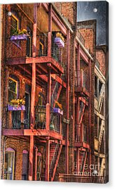The Flower Pots On The Patio Acrylic Print by Paul Ward