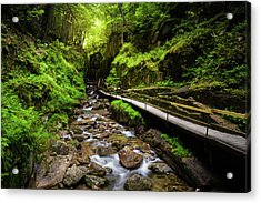 The Flume With Flowing Water Acrylic Print