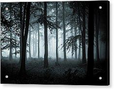 The Fog Acrylic Print by Ian Hufton
