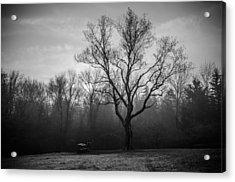 The Fog Acrylic Print by Kristopher Schoenleber