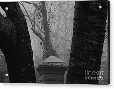 Acrylic Print featuring the photograph The Fog by Steven Macanka