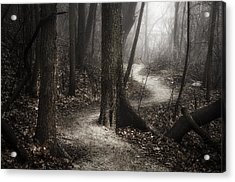 The Foggy Path Acrylic Print by Scott Norris