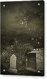 Acrylic Print featuring the photograph The Fortingall Yew by Jane McIlroy