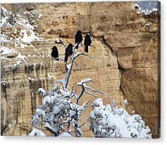 The Four Crows Acrylic Print by Laurel Powell