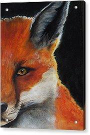 The Fox Acrylic Print