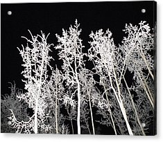 Acrylic Print featuring the photograph The Frost Gleams By Night by Brian Boyle