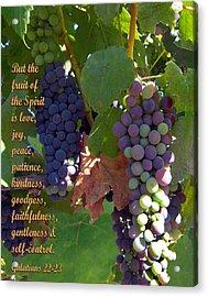 The Fruit Of The Spirit Acrylic Print
