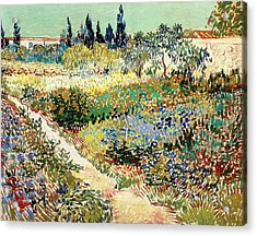 The Garden At Arles, 1888 Acrylic Print by Vincent van Gogh