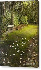 The Garden Bench Acrylic Print by Carrie Cranwill