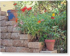 The Garden Wall Acrylic Print by Kay Pickens