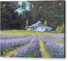 The Gatehouse Store Lavender Farm Acrylic Print by Ron Wilson