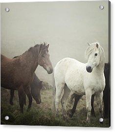 The Gathering Fog Acrylic Print by Irene Suchocki