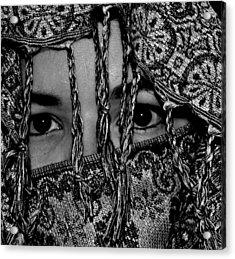The Gaze Acrylic Print by Michelle McPhillips