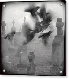 The Ghost Birds Acrylic Print by Gothicrow Images
