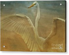 The Giant E Acrylic Print by Deborah Benoit