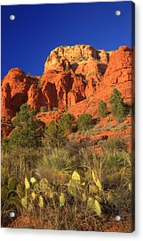 The Glory Of The Desert Red Rocks 1 Acrylic Print