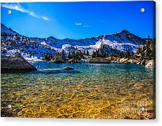 The Gold Lake Bottom Acrylic Print by Mitch Johanson