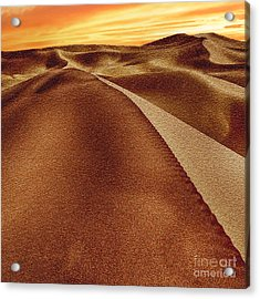 The Golden Hour Anza Borrego Desert Acrylic Print by Bob and Nadine Johnston