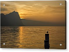 The Golden Hour Acrylic Print by Kim Andelkovic