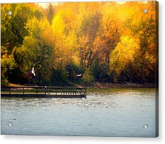 The Golden Hour Acrylic Print by Lucinda Walter