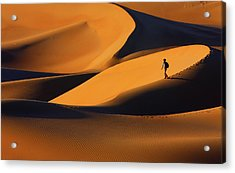 The Golden Light Of Sunset, And Its Form Acrylic Print