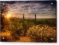 The Golden Southwest  Acrylic Print by Saija  Lehtonen