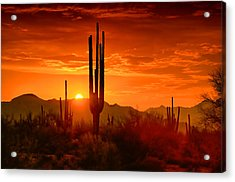 The Golden Southwest Skies  Acrylic Print by Saija  Lehtonen