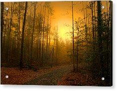 The Golden Touch Of Autumn Acrylic Print by Nina Fosdick
