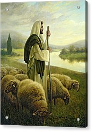 The Good Shepherd Acrylic Print by Greg Olsen