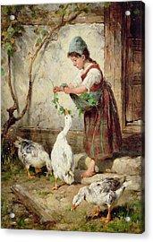 The Goose Girl Acrylic Print by Antonio Montemezzano