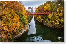The Gorge Acrylic Print by Bill Wakeley