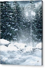 The Gothic Winter Acrylic Print by Boon Mee