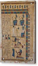 The Graceland Papyrus Acrylic Print by Richard Deurer